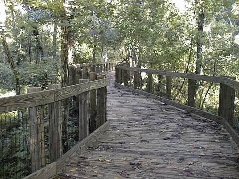 Oakland Nature Preserve Boardwalk